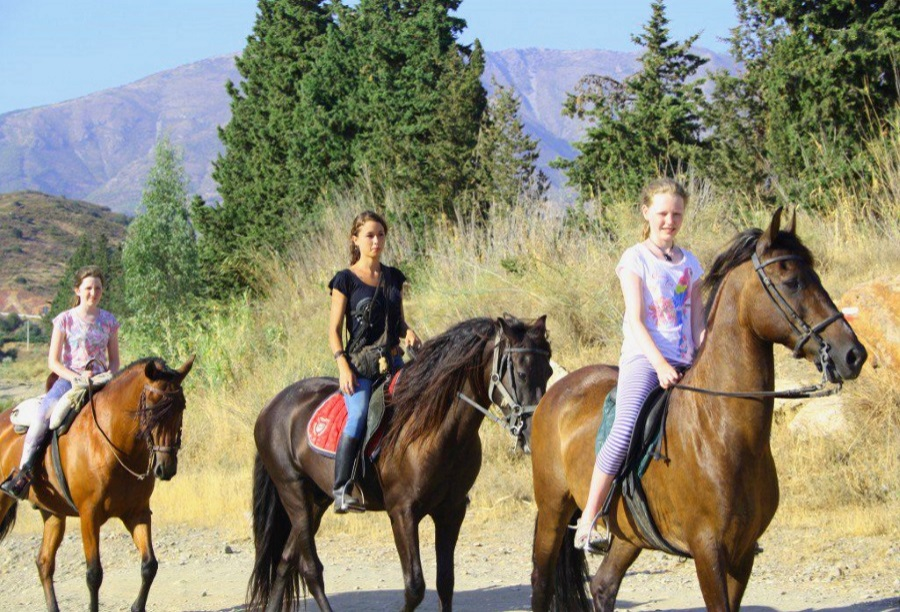 leisure-sport-horse-riding